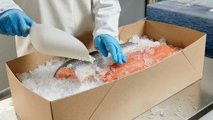 Praktische Verkaufsverpackungen - Kartons aus Vollpappe, braun - Fisch mit Eis, Lebensmittel